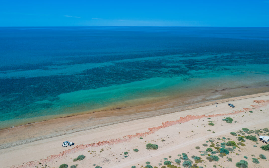 Controversial Subsea 7 pipeline proposal for Exmouth Gulf, Ningaloo put on hold.