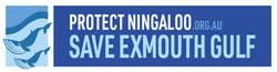 Protect Ningaloo